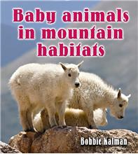 Baby animals in mountain habitats - PB