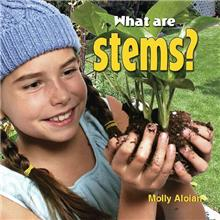 What are stems? - eBook