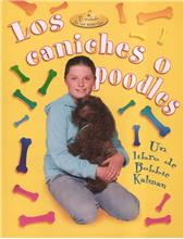 Los caniches o poodles - PB