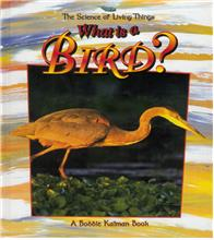 What is a Bird? - PB
