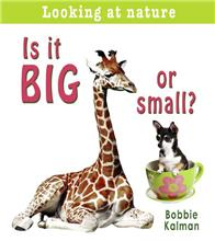 Is it big or small? - eBook