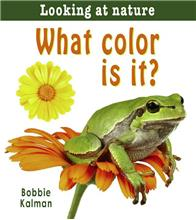What color is it? - eBook