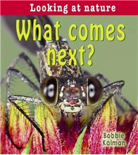 What comes next? - eBook