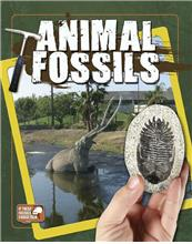 Animal Fossils - eBook