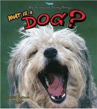 What is a Dog?-ebook