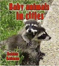 Baby animals in cities-ebook