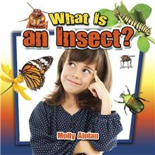 What is an insect? - eBook