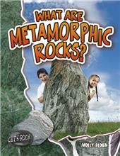 What Are Metamorphic Rocks?-ebook