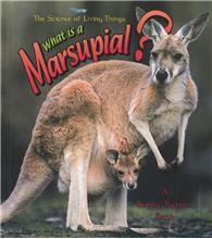 What is a Marsupial? - PB