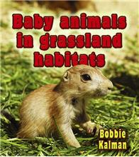 Baby animals in grassland habitats-ebook