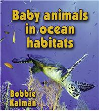 Baby animals in ocean habitats-ebook