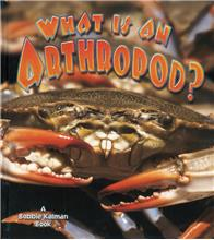 What is an Arthropod? - PB