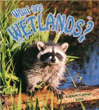 What are Wetlands? - PB