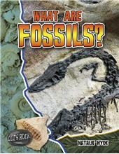 What Are Fossils? - eBook