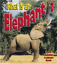 What is an Elephant? - HC