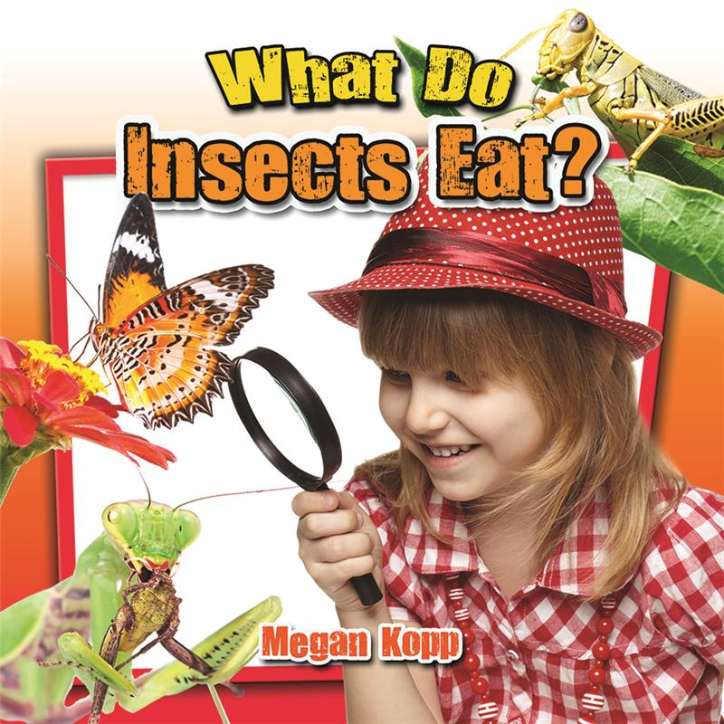 What Do Insects Eat? - PB
