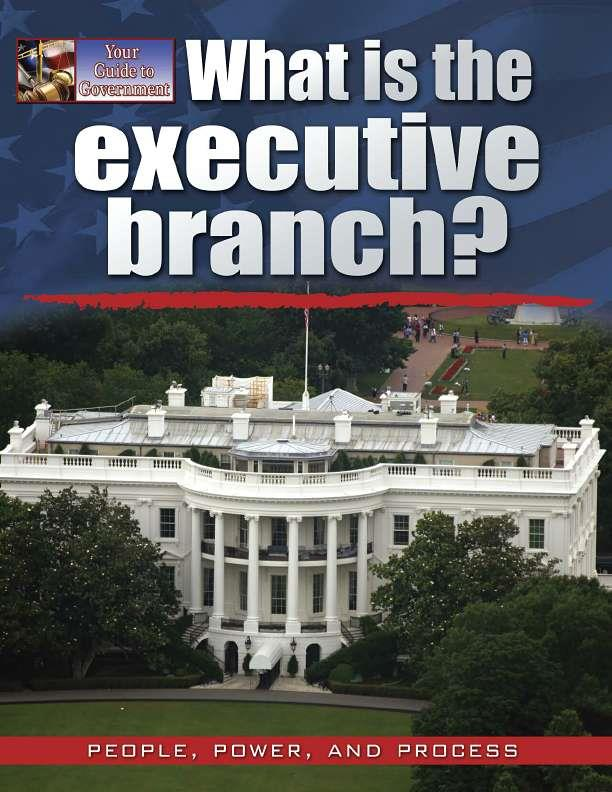 What is the executive branch?-ebook