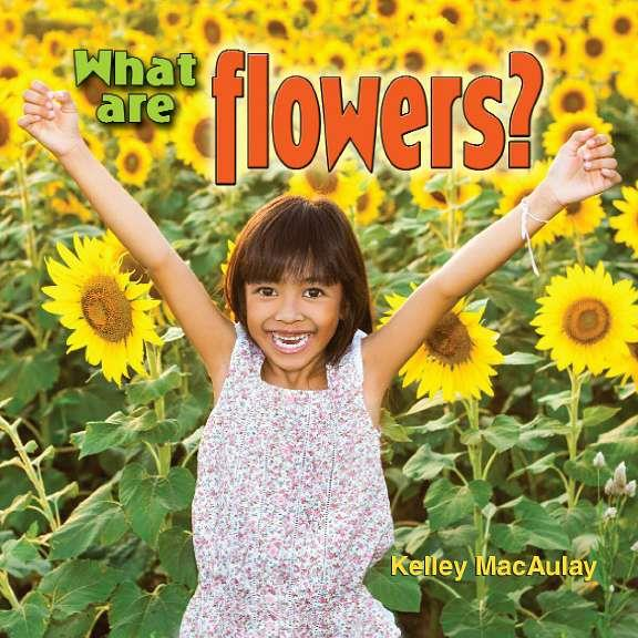 What are flowers? - eBook