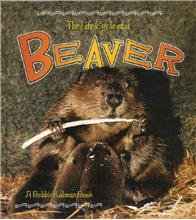 The Life Cycle of a Beaver - HC