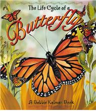 The Life Cycle of a Butterfly - PB