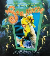 The Life Cycle of a Sea Horse - PB