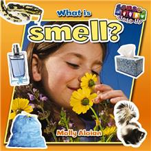 What is smell? - HC