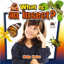 What Is an Insect? - HC