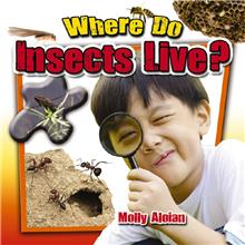 Where Do Insects Live? - HC
