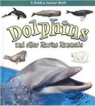 Dolphins and other Marine Mammals - HC