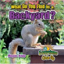 What Do You Find in a Backyard? - PB