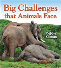 Big Challenges that Animals Face - PB