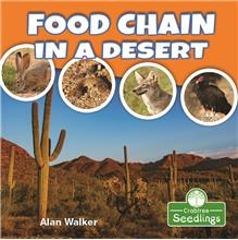Food Chain in a Desert - PB