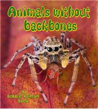Animals without backbones - PB