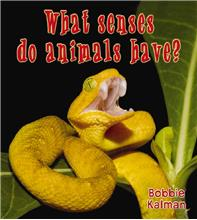 What senses do animals have? - PB