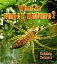 What is super nature? - PB