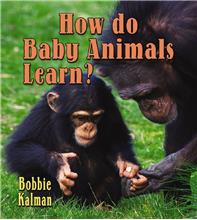 How do baby animals learn? - PB
