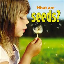What are seeds? - PB