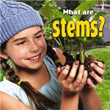 What are stems? - PB