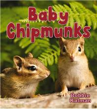 Baby Chipmunks - PB