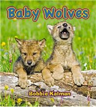 Baby Wolves - PB