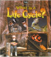 What is a Life Cycle? - PB