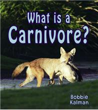 What is a Carnivore? - eBook