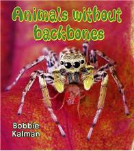 Animals without backbones - eBook