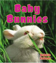 Baby Bunnies-ebook