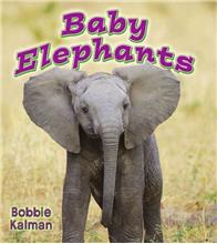 Baby Elephants - eBook