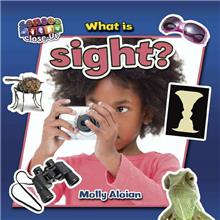What is sight?-ebook