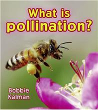What is pollination? - eBook
