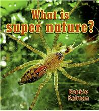 What is super nature? - eBook