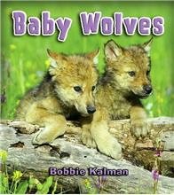 Baby Wolves - eBook
