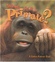 What is a Primate? - PB